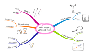 mind mapping l'efficacité facile
